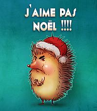 SPECTACLE MUSICAL DE NOEL AVEC MERLENCHANTEUSE : J'AIME PAS NOEL  
